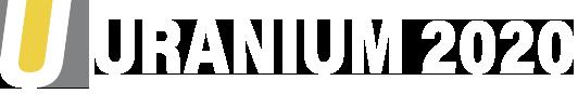 U2020 Logo